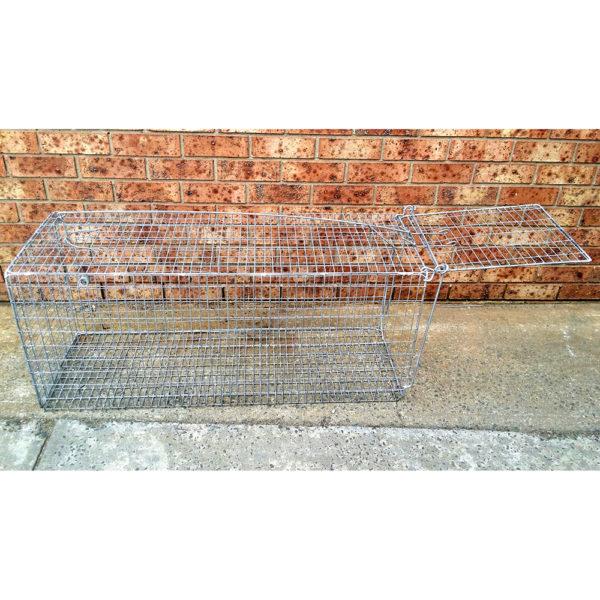 fox trap - wire animal trap